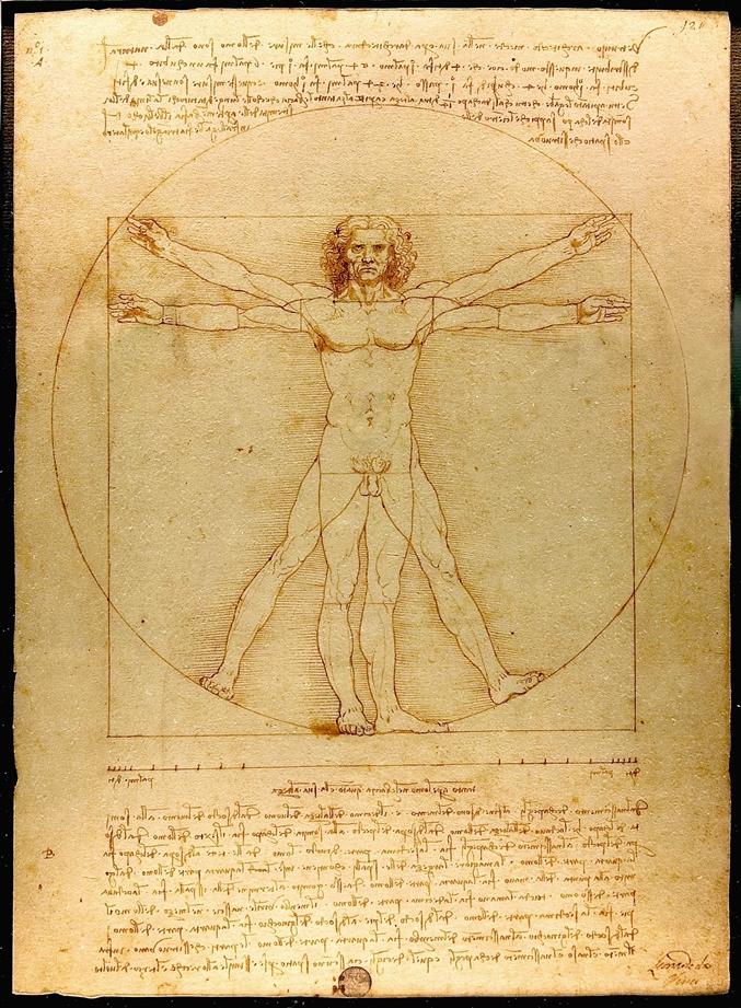 Leonardo-Hombre de Vitrubio